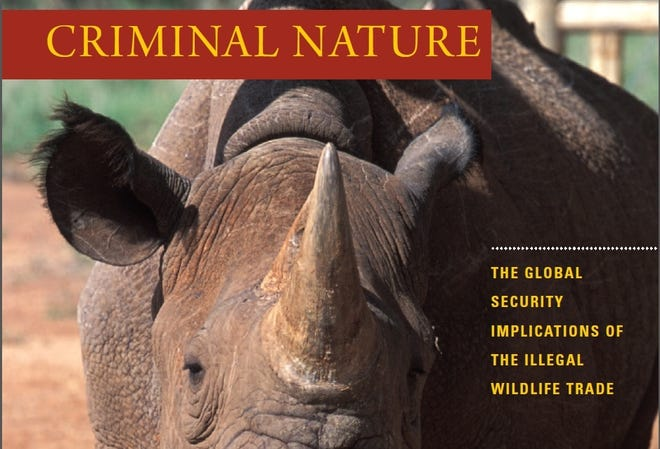 "Cover of ""Criminal Nature"" report."