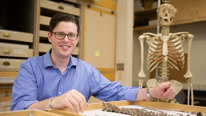 Baseball players may have evolutionary ancestor to thank for their ability to throw, says a study led by Neil Roach, a postdoctoral scientist at George Washington University.