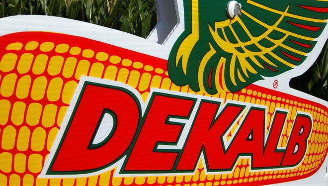 The DEKALB corn logo is seen on along side of rows of corn in a Sunday, July 22, 2012 file photo, in Ashland, Ill.  DEKALB is one of Monsanto's leading North American brands. Monsantoís fiscal third quarter net income slipped 3 percent, as hits to the agricultural product companyís cotton and soybean seed segments restrained revenue growth. The St. Louis company said Tuesday, June 25, 2013 its revenue for the quarter that ended May 31 inched up less than 1 percent to $4.25 billion, as Monsanto booked a smaller contribution from its Brazilian soybean business and saw a drop in overall planted cotton acres.(AP Photo/Seth Perlman, File) ORG XMIT: NY116