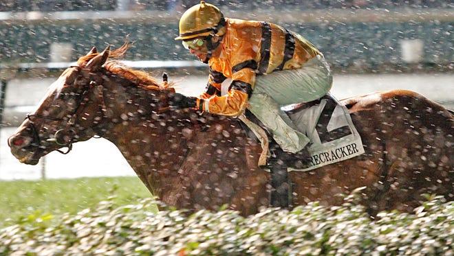 Wise Dan, with jockey John R. Velazquez, wins the Firecracker Handicap horse race in a driving rain Saturday night at Churchill Downs in Louisville.