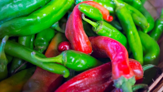 Green and red chiles come from the same plant; greens are younger peppers and reds are fully ripe.