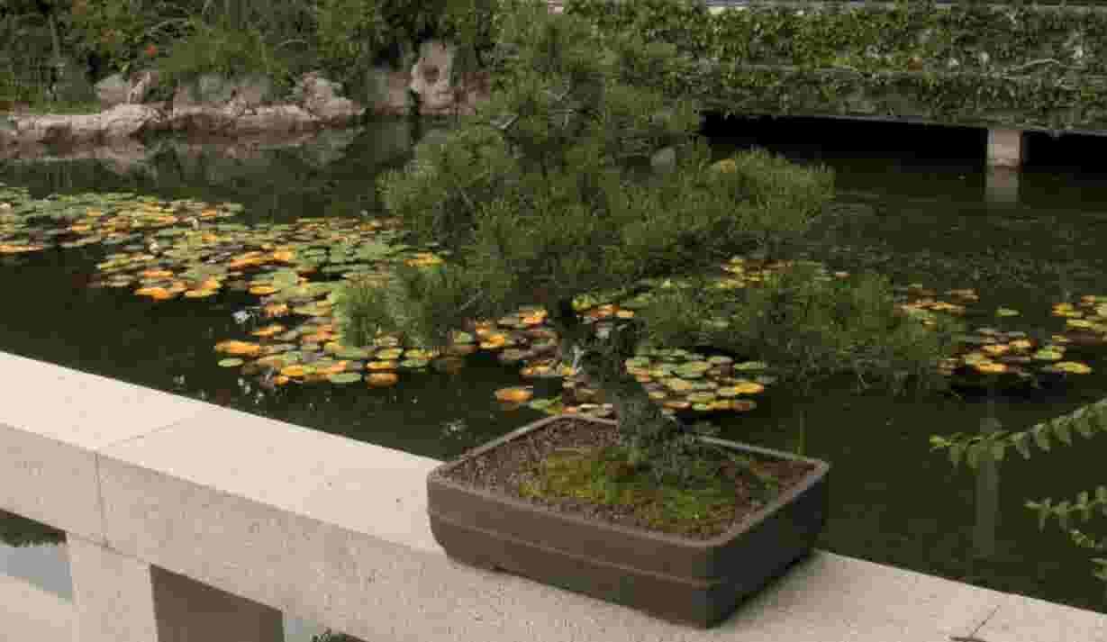 Portland\'s Lan Su Chinese Garden