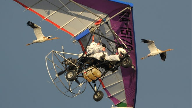 In this Sept. 5 photo, Russian President Vladimir Putin flies in a motorized hang-glider alongside two Siberian white cranes.