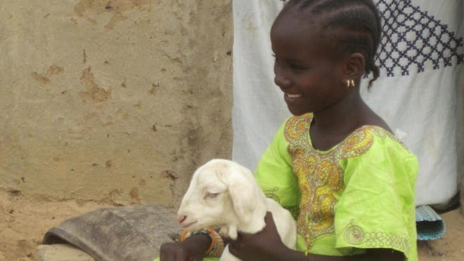 Heifer International, which donates livestock and training in developing countries, is among more than 2,000 supporters of #GivingTuesday