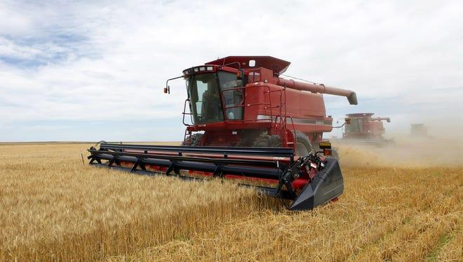 A farmer harvests winter wheat in Roggen, Colo., near Greeley.