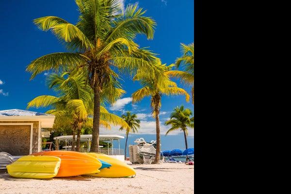 /presto/2019/02/28/USAT/dbb6dd97-5da8-456d-8772-d2c350bf793e-2-Palm-Beach-Florida-shutterstock_387989671 jpg