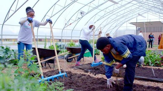 Students from MSU's InnovateGov Internship program and DPSCD Farm to School Internship Program are taking part in a summer learning experience at Drew Farm at Drew Transition Center in Detroit on June 27, 2018.