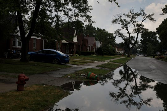 Murray Hill street after it rained on the west side of Detroit on Monday, July 16, 2018.