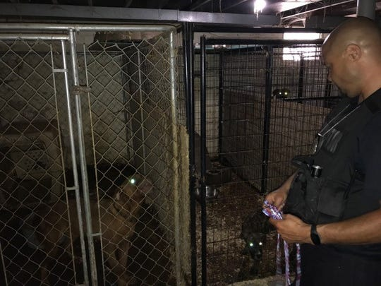 19 dogs were removed a home on Detroit's east side.