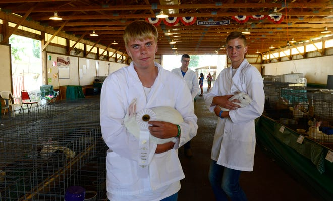 Mason LaRue, left, and Caleb Bench with the 4-H club Livestock Unlimited showed their rabbits at the Ottawa County Fair in 2018.