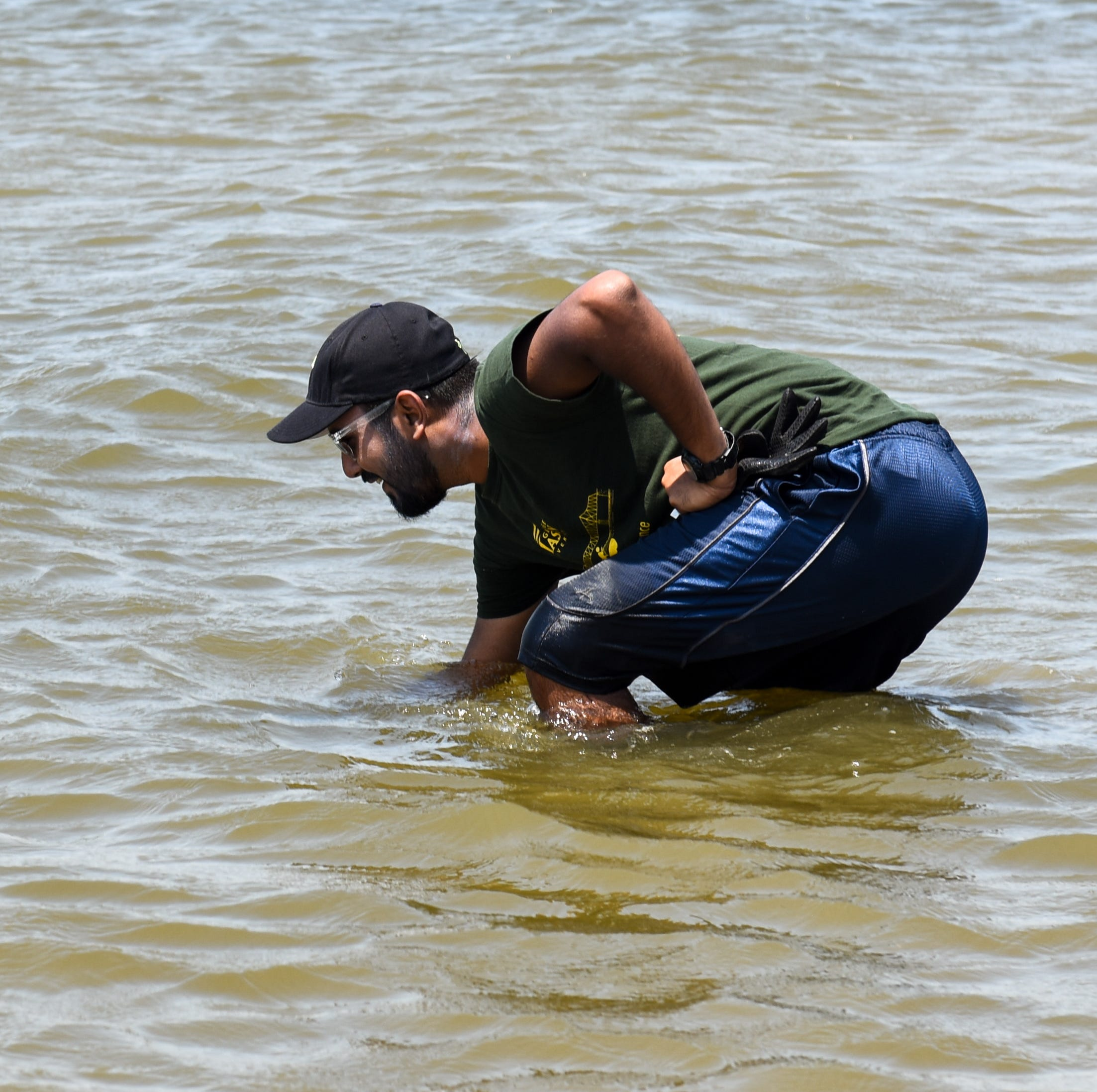 Civil engineering Ph.D candidate Ali Rezaie searches for a wave monitor that the George Mason University research team has planted to monitor wave energy in the area on Tuesday, July 17.