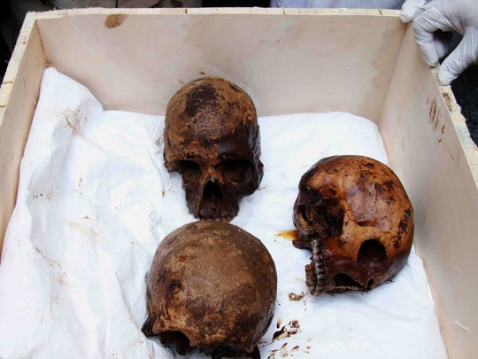 Egyptian archaeologists show skulls of three decaying mummies found in a black granite sarcophagus found in Sidi Gaber district, Alexandria, Egypt.