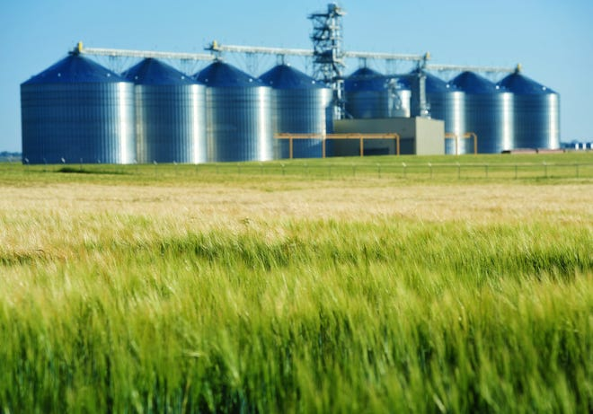 A bill sponsored by Rep. Ross Fitzgerald, R-Fairfield, will double the maximum cap on how much grain farmers can be charged for the checkoff. Gov. Steve Bullock signed it into law last Wednesday.