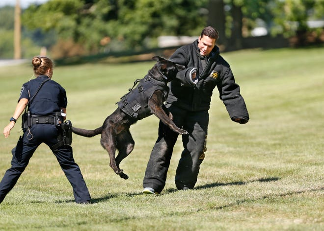West Lafayette Police Department K-9 officers Libby Romstadt and Adam Miller with a demonstration with K-9 Barry for Explorers Friday, July 20, 2018, as part of the National Law Enforcement Exploring Conference on the campus of Purdue University.