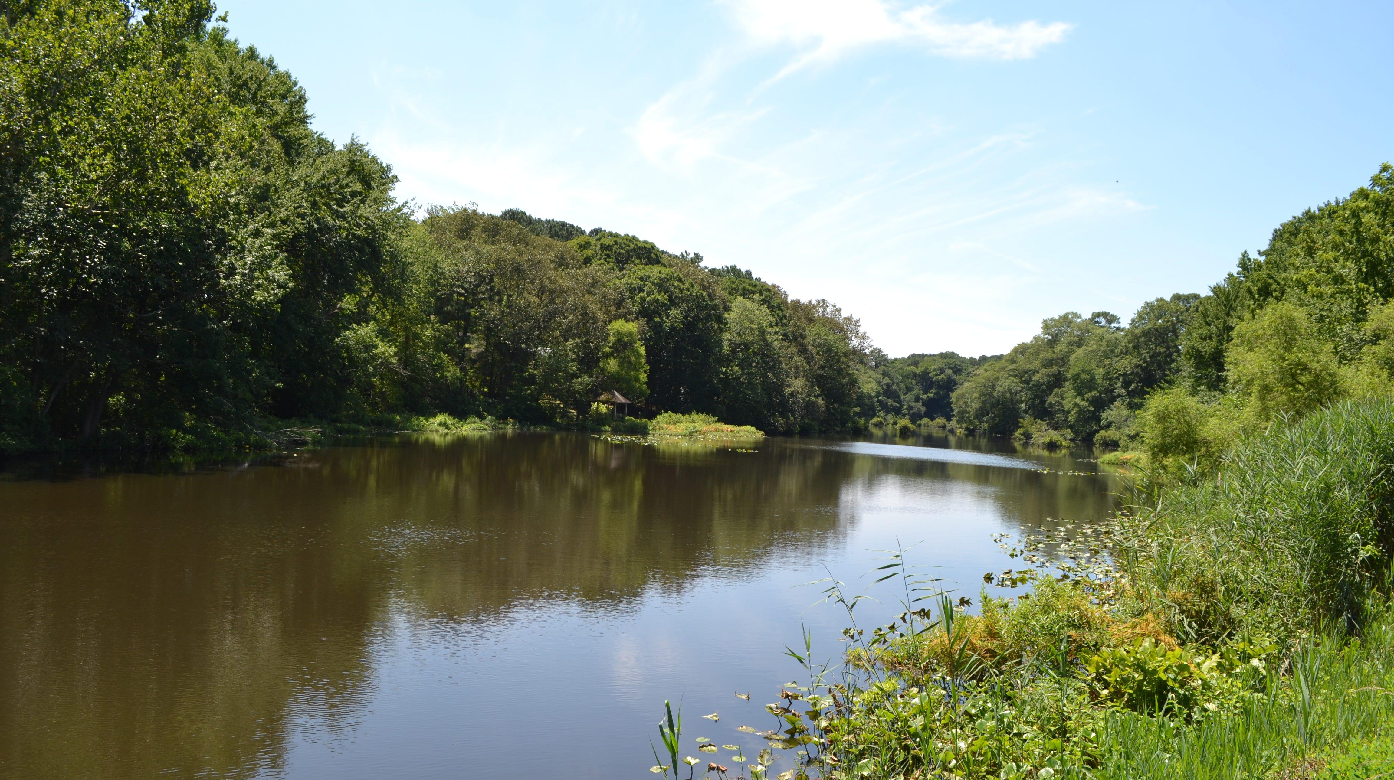 Wicomico plans $2 million Morris Mill dam rehab work