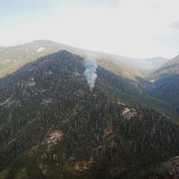 Firefighters hope to stop Sequoia National Park wildfire before it grows