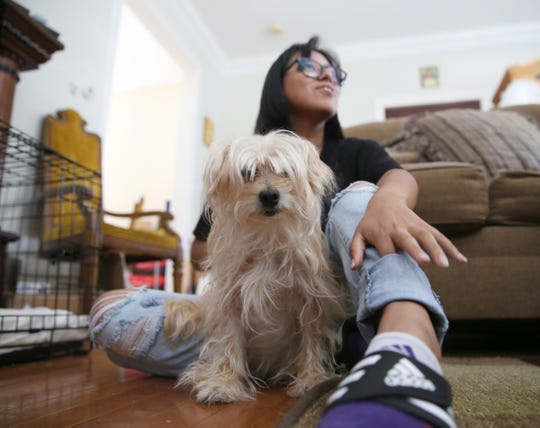 Teresa Alvarado, 17, with the family dog, Julie, at their Garnerville home on Friday.  Julie was reported missing last July and was just found and returned.
