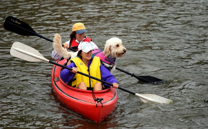 Jan Thiel, front, and Whitney Thiel, along with Stella, get in position for the start of the Park-to-Park Paddle Saturday, July 21, 2018, at Shattuck Park in Neenah. The North East Wisconsin Paddlers hosted the annual event that finished at Lutz Park in Appleton, Wis.