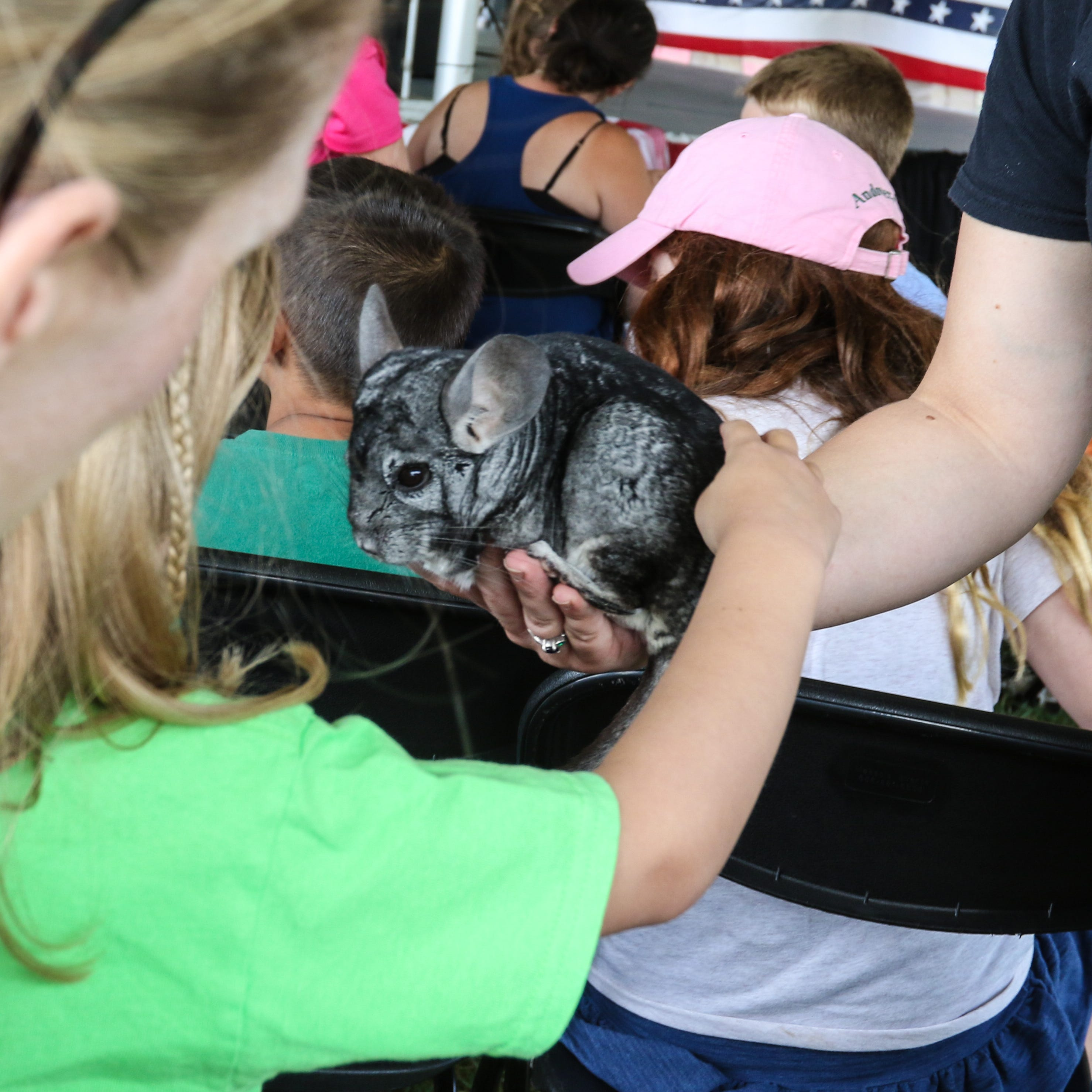 Crowds flock to Morris 4-H Fair in Chester Twp. for rides, live music and competitions