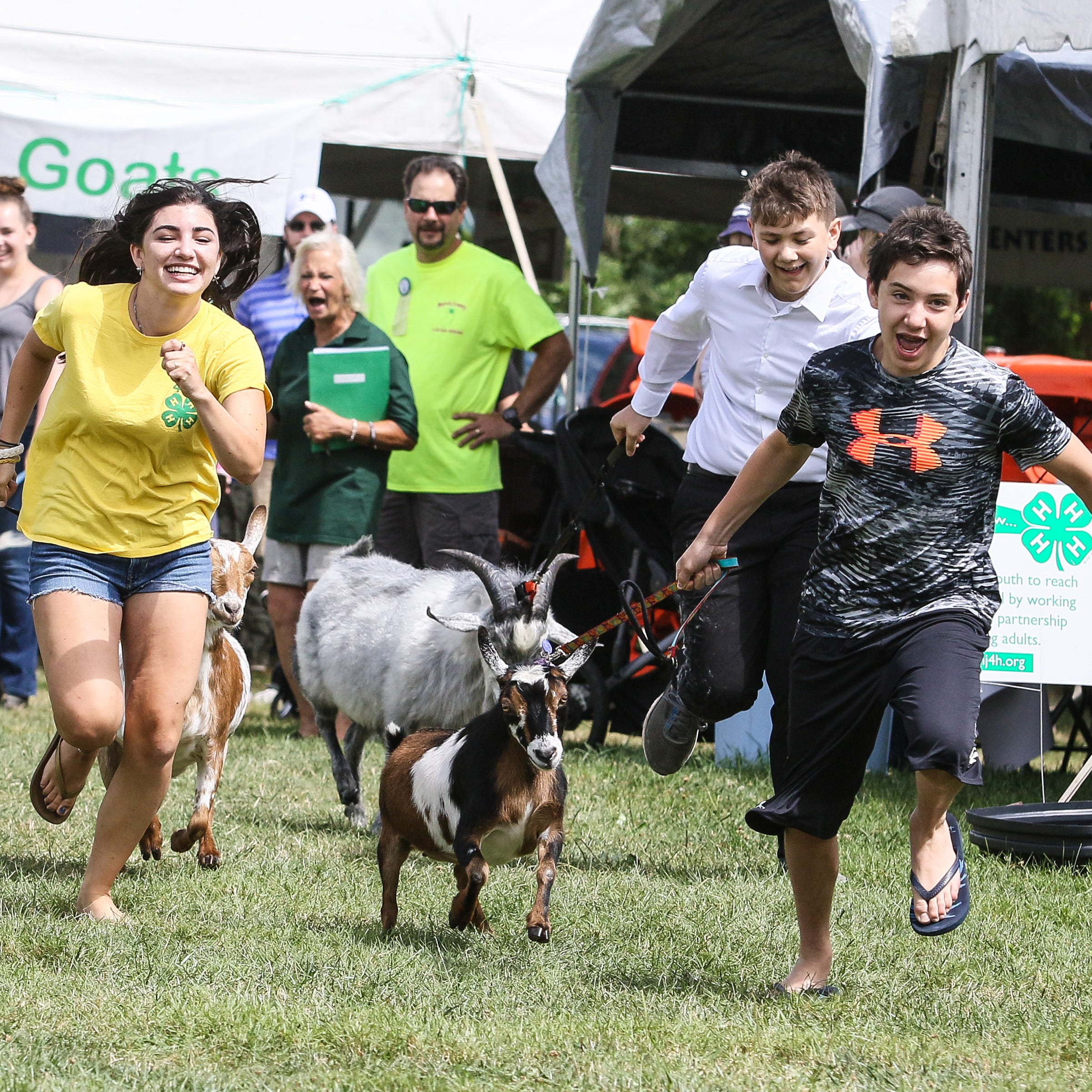 Logan Hallihan leads in first place with his goat Trixie as his sister Devon comes in second place during the 4-H Goat race at the Morris 4-H Fair in Chester on July 21, 2018.