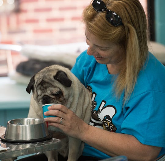 Valerie Ulmer of Gilberts, Illinois, watches as her dog Ripper, a 14-year-old pug, enjoys a bowl of ice cream at Salty Paws in Rehoboth.
