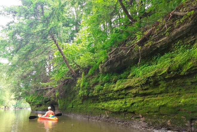 Brian Clark paddles along a limestone cliff on the Baraboo River in Sauk County