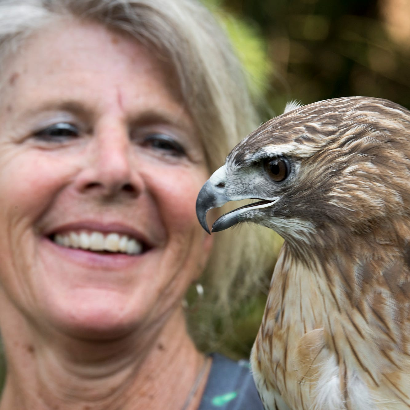 'I wanted to help return their freedom': Meet the York County woman who rehabs raptors