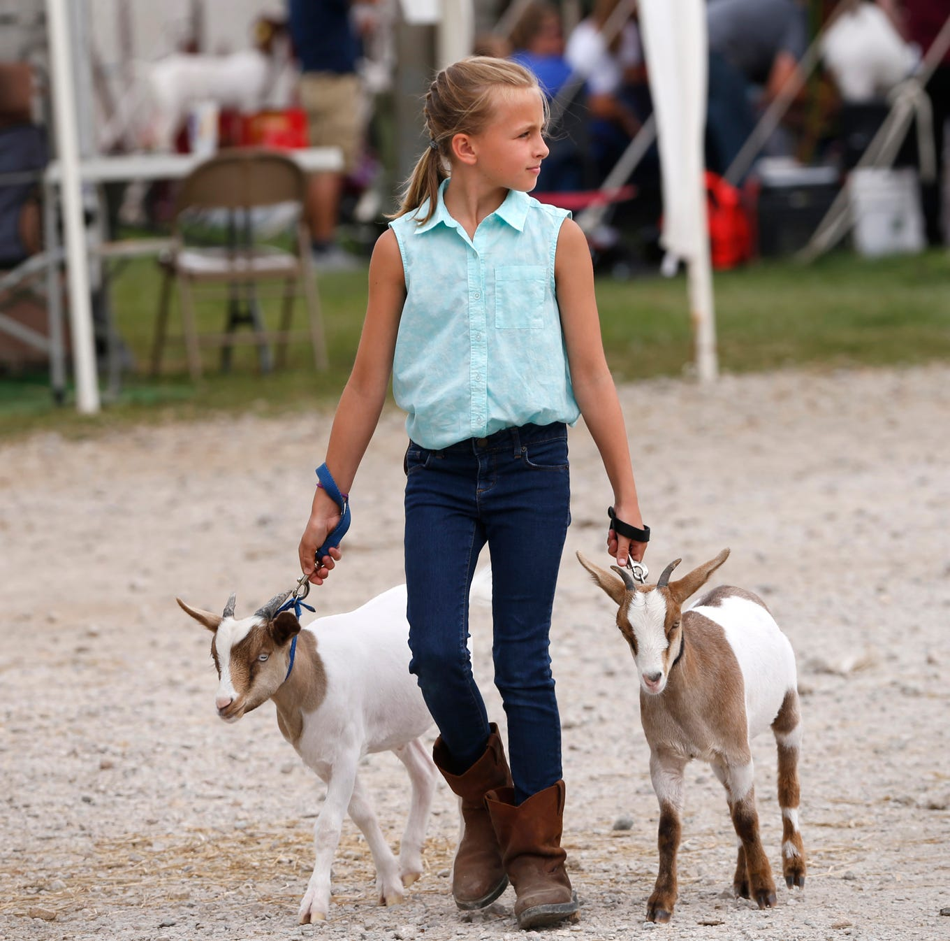 Monday at the Tippecanoe County 4-H Fair