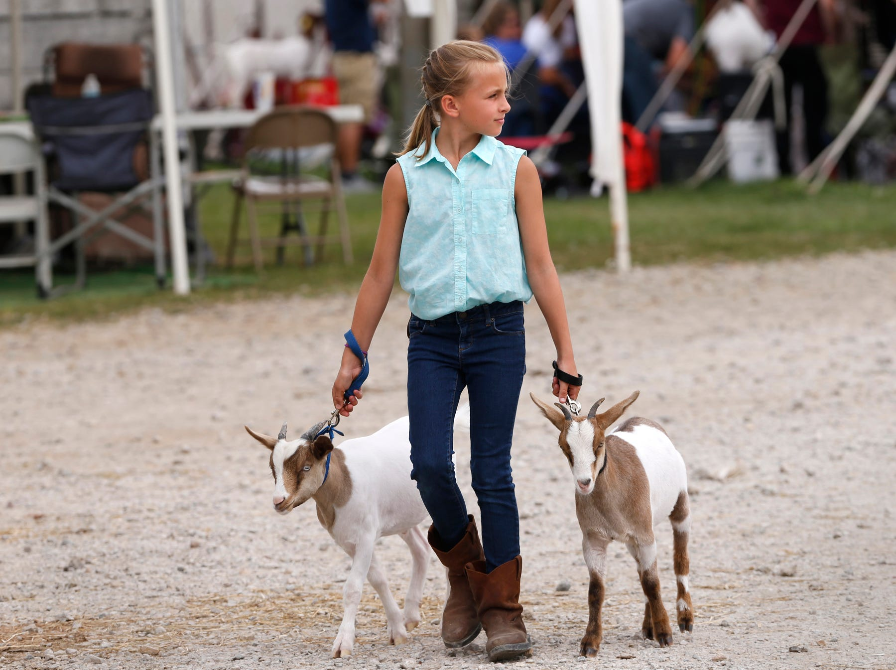 Maddison Crum, 11, walks her Myotonic goats at the Tippecanoe County 4-H Fair Monday, July 23, 2018, in Lafayette. Crum will be a sixth grade student at Southwestern Middle School in the fall.