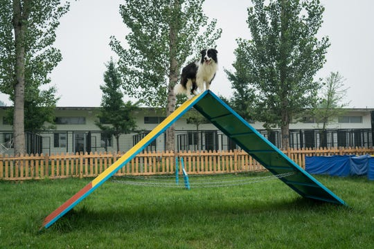 Sylar stands on top of an A-frame in the training field at a Beijing house, which opened in May.