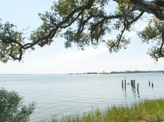 Overlooking Pensacola Bay toward White Island and NAS Pensacola's Magazine Point in Pensacola on Monday, July 23, 2018.  Escambia County has received funding from the Gulf Coast Ecosystem Restoration Council as a result of the Deepwater Horizon oil spill for a living shoreline project in 3 areas around the naval air station.