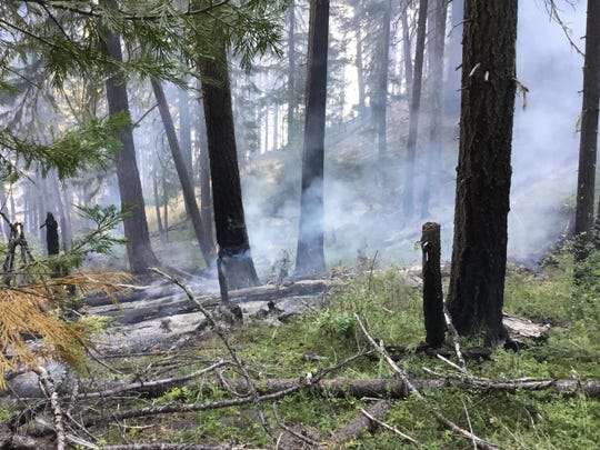 Fire damage along the northwest edge of the Sugar Pine Fire July 19.