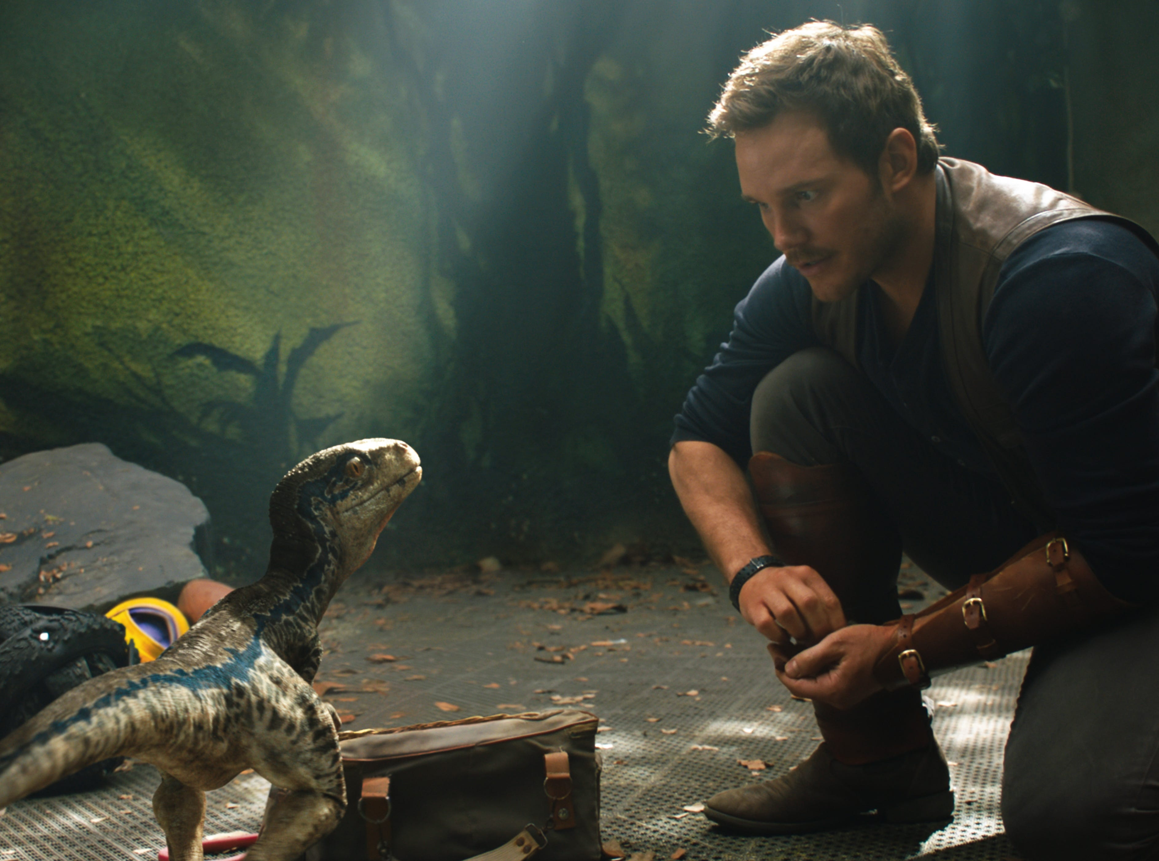 """Owen (CHRIS PRATT) with a baby Velociraptor in """"Jurassic World: Fallen Kingdom."""" When the island's dormant volcano begins roaring to life, Owen and Claire (BRYCE DALLAS HOWARD) mount a campaign to rescue the remaining dinosaurs from this extinction-level event. Welcome to """"Jurassic World: Fallen Kingdom."""" [Via MerlinFTP Drop]"""