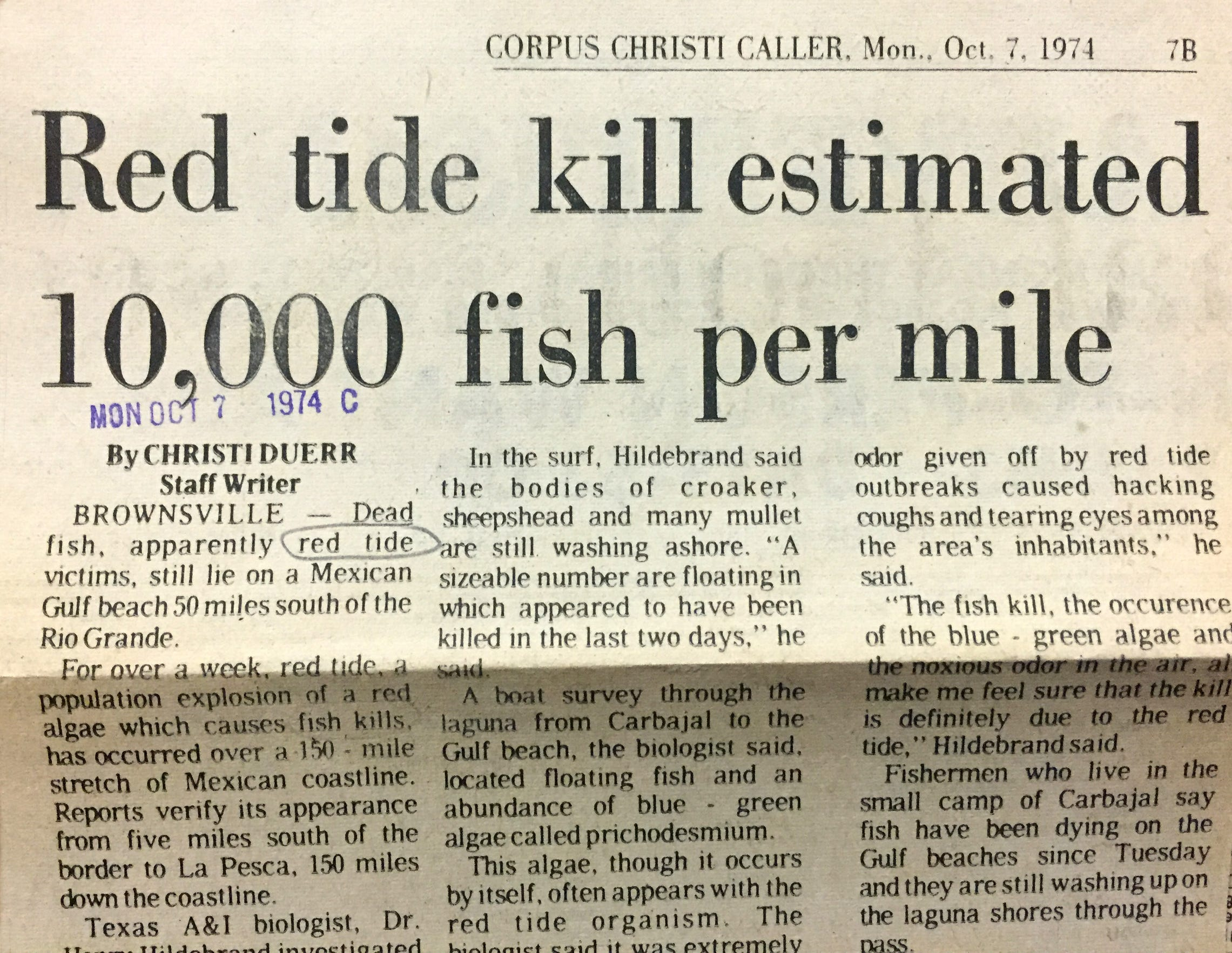 A Caller-Times story from 1974 reports a fish kill from a red tide bloom on the lower Texas coast.