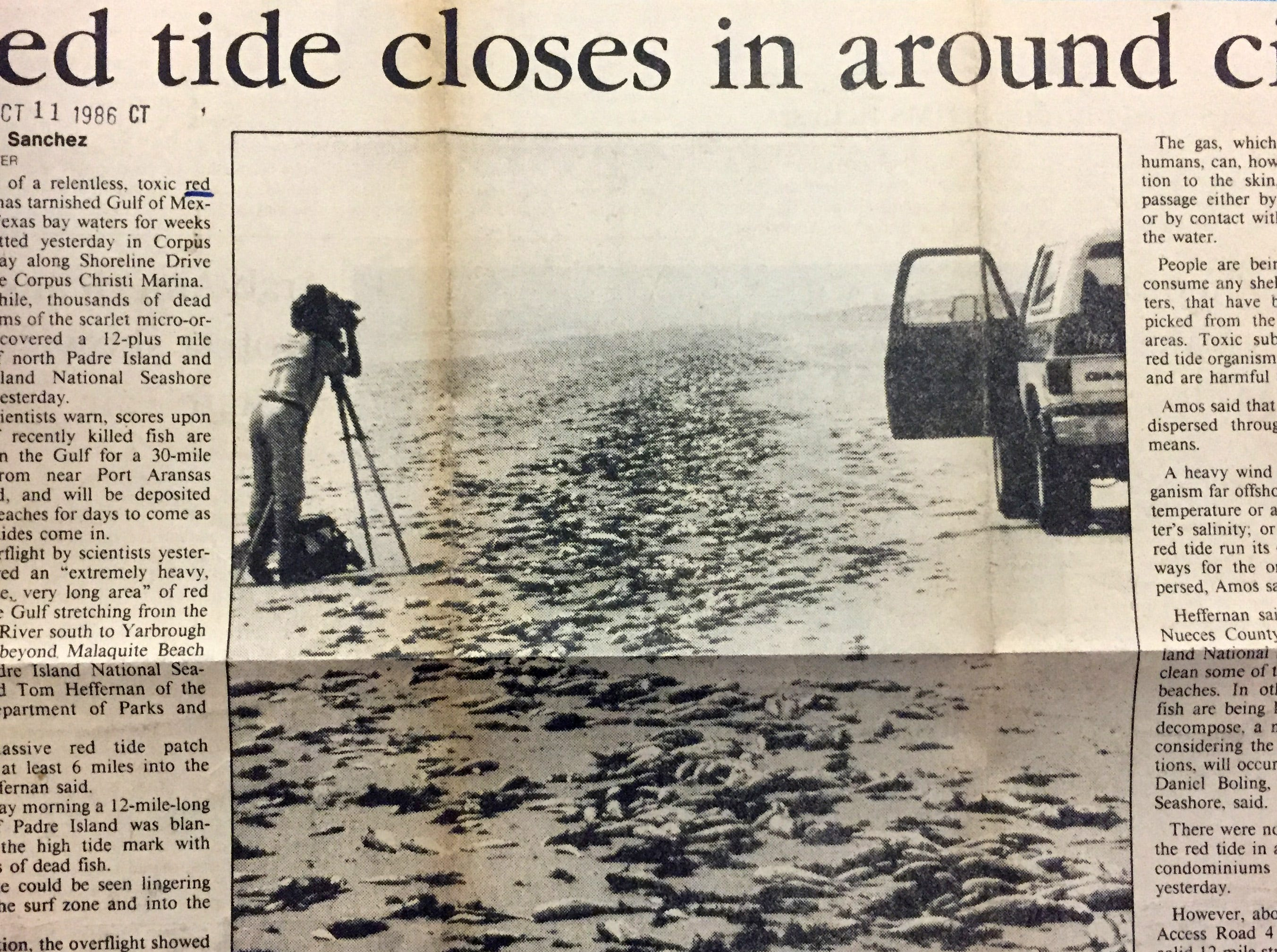 Historic newspaper reports helped researchers determine a correlation between red tide outbreaks and respiratory illness.