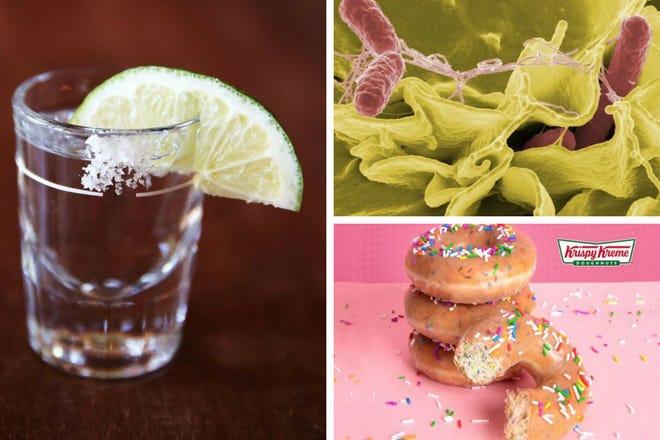 Tequila Day, salmonella, doughnuts
