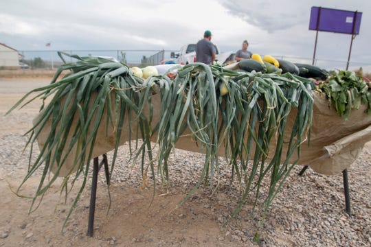 Onion stalks lay over the table of Jabek Farms during Monday's first Kirtland Town Hall Growers Market.