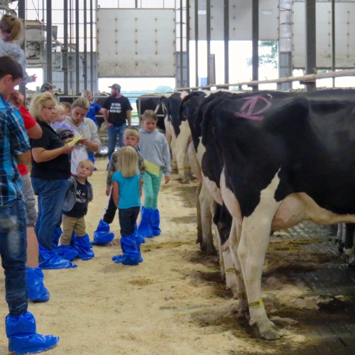 Oconto County Dairy Promotion Committee: Promoting local dairy products