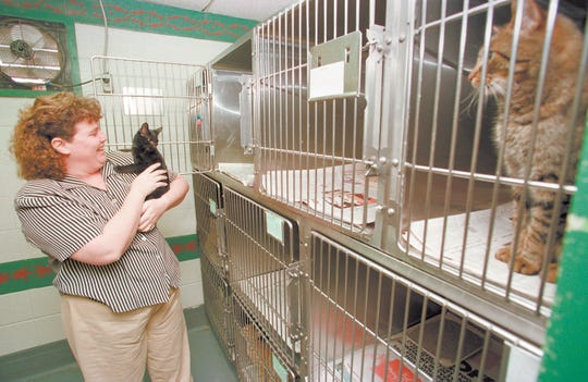Anne Burns was hired as director of Livingston County Animal Control in 1998. She was fired in 2010. Now the assistant director of Ingham County Animal Control, she was suspended earlier this month with pay while an investigation into how the agency handled a group of dogs continues. She has since announced her retirement.