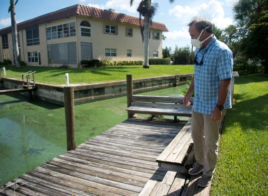 "Blair Wickstrom, publisher of Florida Sportsman magazine, examines the green algae congregating Wednesday, July 25, 2018 in a boat basin and canal off the South Fork of the St. Lucie River near the Florida Sportsman office in Stuart. Despite previous toxic algae outbreaks in Martin County in 2005, 2013 and 2016, this year has been the worst for this location, prompting Wickstrom to close the magazine's office for the safety of the employees after they began developing respiratory problems. ""You have long-term health issues with your exposure to the blue-green algae and microcystin toxins. It's just not clear (if) the airborne exposure is going to lead to ALS or Alzheimers,"" Wickstrom said. ""You cannot just bury your head in the sand and wish it away because it's continuing to get worse."""