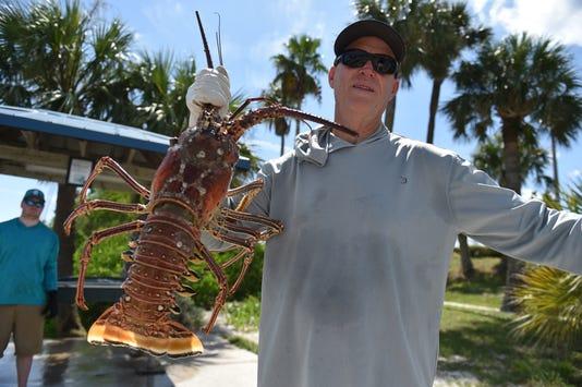 Tcn 0725 Sa Sl Lobsters 16