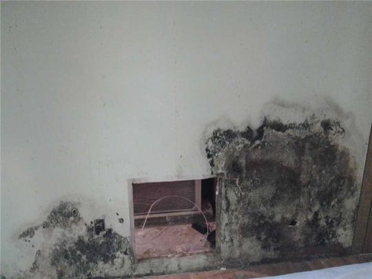 Mold can develop in the home when humidity levels get too high, damaging walls and other surfaces, as shown on this basement wall, causing allergic reactions in people that are sensitive to them, such as sneezing, watery eyes, a runny nose or other symptoms.