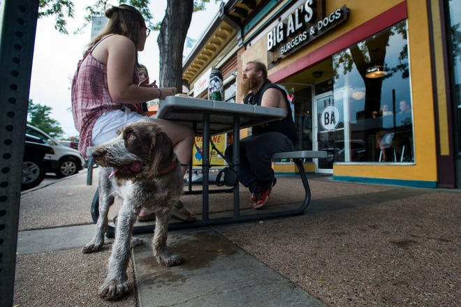 Four-monoth-old Italian spinone puppy Aldo hangs out with his owner Emily Underwood while she eats with friends at Big Al's Burgers and Dogs on Thursday in Fort Collins.