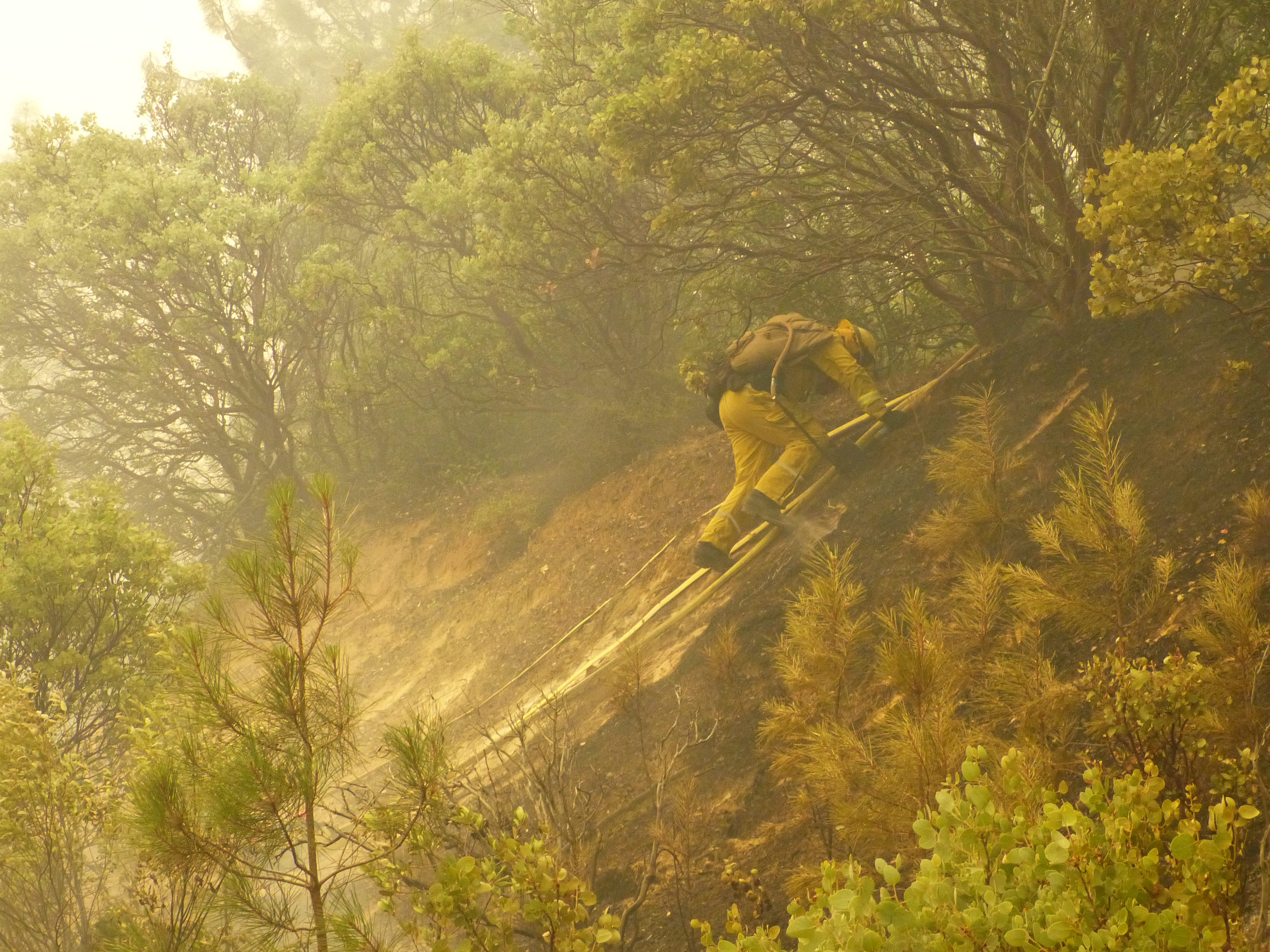 Fighting the Carr Fire.