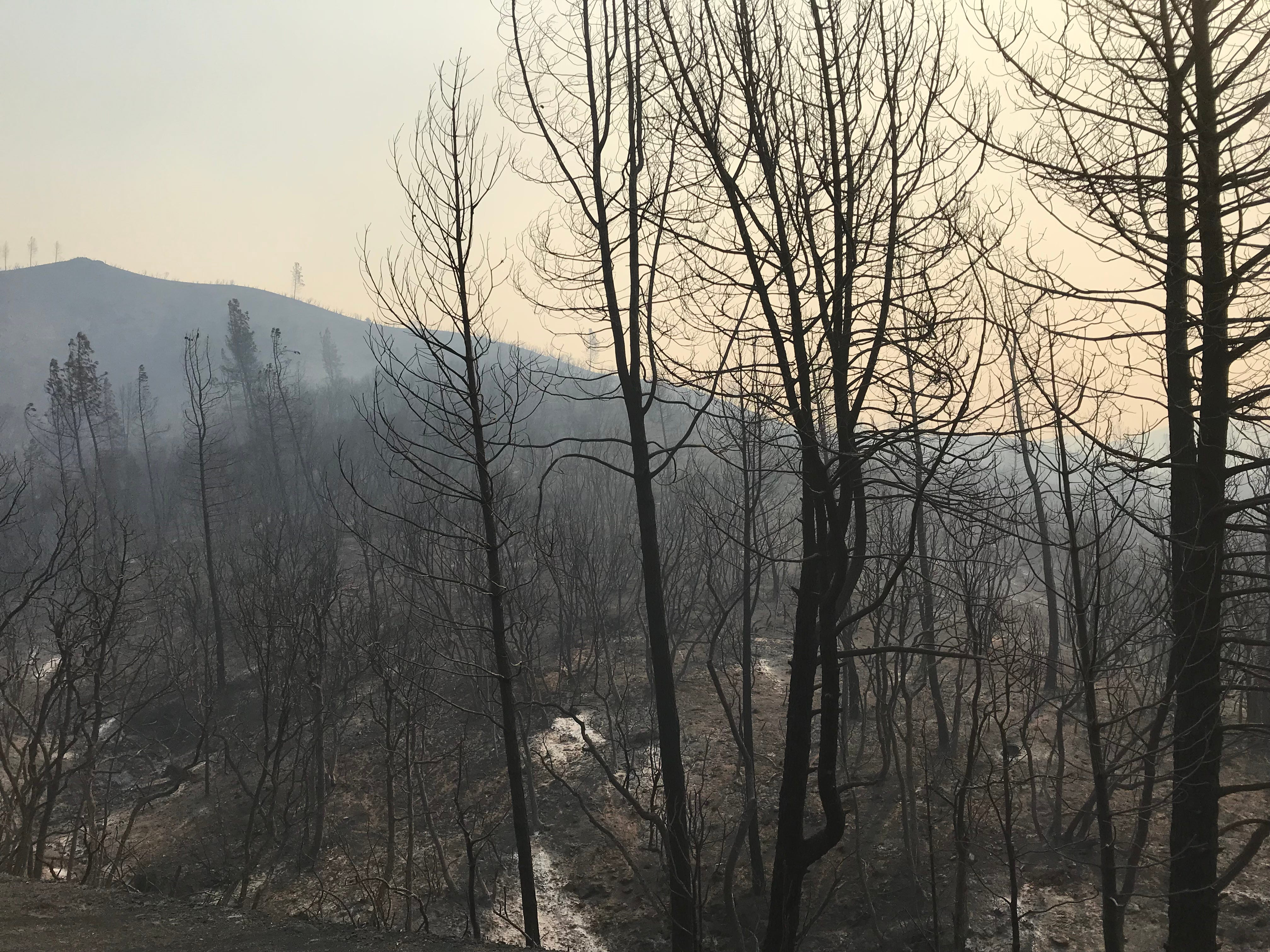The Carr Fire ripped through the Whiskeytown National Recreation Area.