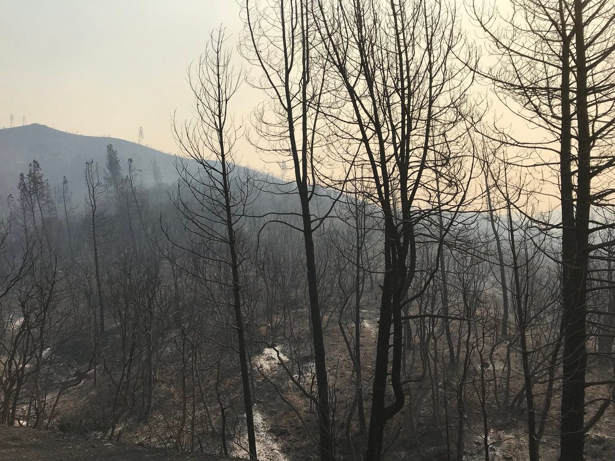 The Carr Fire on Thursday, July 26, 2018 tore through parts of Whiskeytown National Recreation Area.