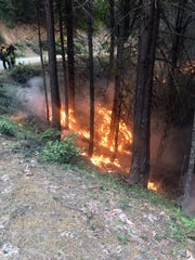 Fire activity along Forest Road 18 on the Garner Complex.