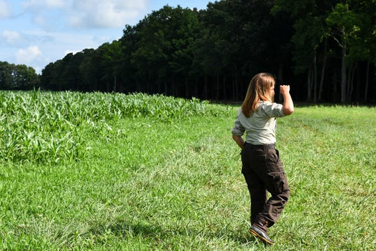U.S. Fish & Wildlife Service project manager Marcia Pradines scans the woods for birds at the Blackwater National Wildlife Refuge on July 25.