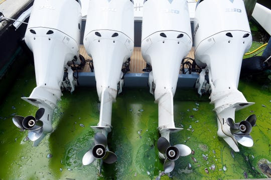 """A thick layer of blue-green algae floats through the boat slips at Sovereign Yacht Sales Thursday, July 26, 2018, in Stuart. Employees are now being asked to wear ventilated masks when working outside. """"We don't want them breathing in that bad stuff,"""" said Tom Cubr, a Sovereign yacht broker. """"It's harmful, and we've got to take care of our employees."""""""