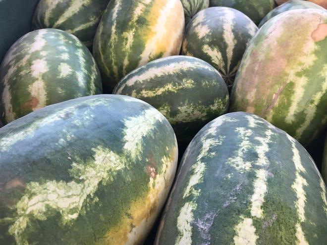 Watermelons at the Abilene Farmers Market on Thursday.